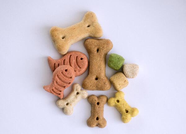 Cavapoo treats